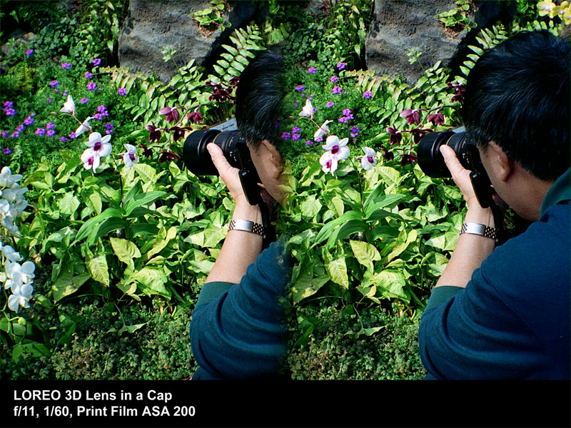 Man photographing flowers